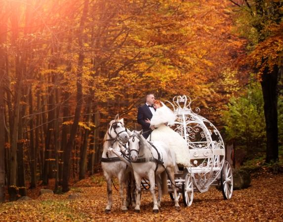 Plan the perfect fall wedding go vibrant plan the perfect fall wedding junglespirit Gallery